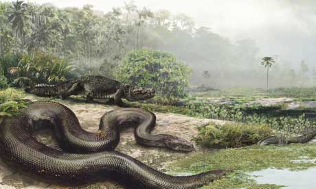 Giant-snake.article
